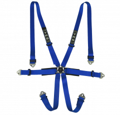 International 6 Point FHR Only FIA Harness